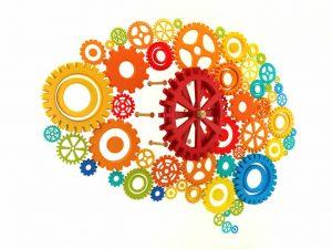 kognitif2