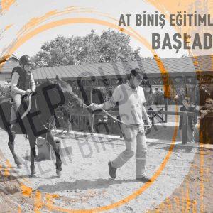 YeniGün'de At Biniş Eğitimleri Başladı!