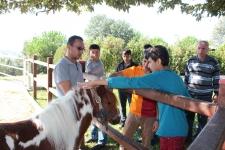 Hayvan Hakları Günü, Barınak Ziyareti
